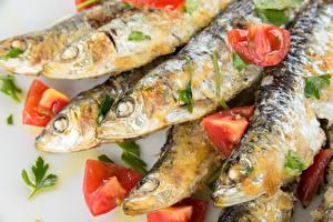 Картинка Морепродукты Рыба Томаты