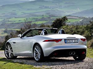 Фотография Jaguar Кабриолет Вид сзади Серебряный F-Type S машины