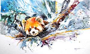 Обои Медведи Бамбуковый медведь Малая панда Рисованные