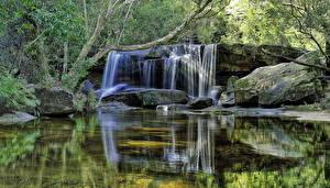 Фотографии Водопады Камни Деревья Природа