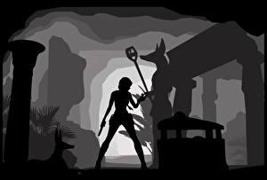 Картинки Tomb Raider Лара Крофт Силуэт The Last Revelation компьютерная игра Девушки