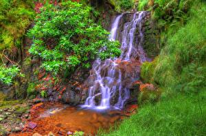 Обои Водопады Мох Кусты Трава HDR Belmont Природа фото
