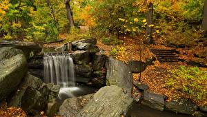 Обои Водопады Осень Камни Леса Листья Природа
