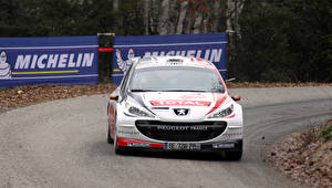 Картинка Пежо Спереди Белая Ралли 207 WRC Автомобили