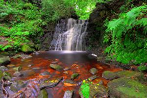 Картинка Англия Водопады Камень Tigers Clough Rivington Природа