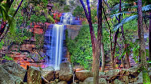 Обои Водопады Камни Ствол дерева HDR Ручей Природа фото