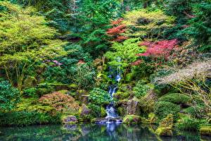 Картинки Сады Водопады Камни Кусты Деревья HDR Ручей Природа
