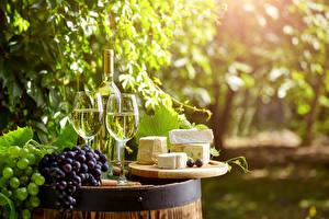 Картинки Напиток Вино Виноград Сыры Виноградник Бокалы Бутылки Продукты питания