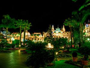 Фотография Монако Парк Дома Монте-Карло Пальма В ночи Уличные фонари Казино Города Природа