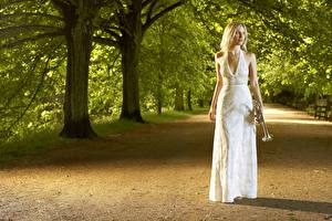 Фото Парки Музыкальные инструменты Платье Деревья Alison Balsom Trumpet Soloist Музыка Знаменитости Девушки