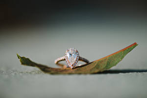 Фотография Украшения Крупным планом Алмаз обработанный Кольца Лист