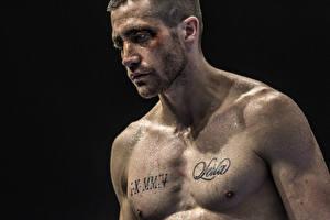 Обои Мужчины Татуировки Southpaw 2015 Jake Gyllenhaal Фильмы Знаменитости фото