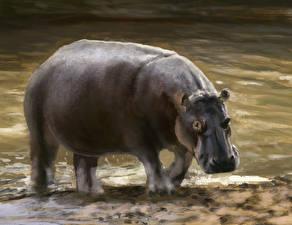 Фото Бегемоты Рисованные животное