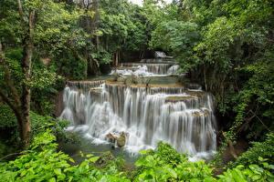 Обои Таиланд Реки Водопады Леса River Kwai Erawan waterfall Природа фото