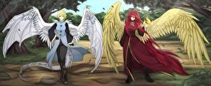 Обои Ангелы Двое Крылья Фантастика Девушки