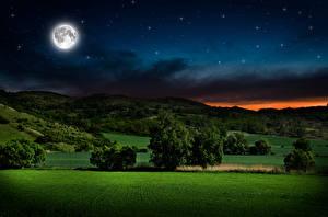 Картинка Пейзаж Небо Луга Ночные Луна Деревья Природа