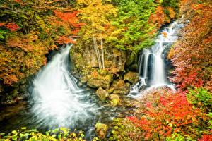 Фотография Сезон года Осенние Водопады Камень Природа