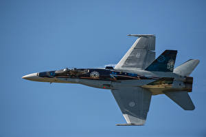 Обои Истребители Самолеты CF-18 Hornet Авиация фото