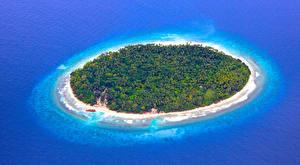Обои Мальдивы Остров Море Сверху