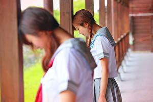 Фотографии Азиаты Ученица Шатенки Вдвоем молодая женщина