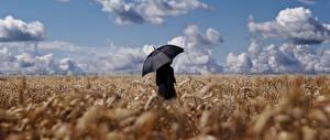 Фото Поля Мужчины Небо Зонт Облака Природа