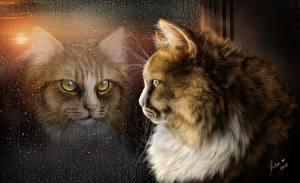 Фотография Кошки Рисованные Живопись Взгляд Капли Стекло Животные