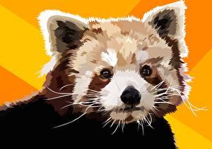Фотография Малая панда Векторная графика Рисованные животное