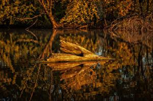 Картинки Озеро Осень Природа
