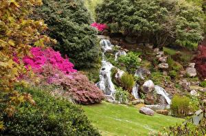 Картинка Великобритания Парки Водопады Камень Кусты Sheffield Park Garden Природа