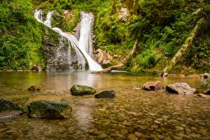 Картинка Водопады Леса Камни Германия Реки All Saints Waterfalls Black Forest Lierbach river Baden-Württemberg Природа