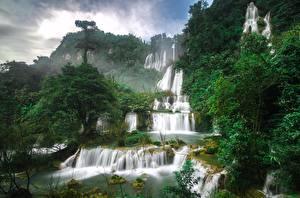 Обои Таиланд Водопады Леса Thi Lo Su Waterfall Природа фото
