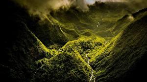 Фото Горы Лес Сверху Природа