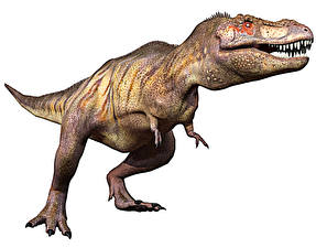 Обои Древние животные Динозавры Тираннозавр рекс side attack 3D_Графика
