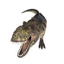 Фото Древние животные Динозавр Тираннозавр рекс Зубы ready 3D_Графика