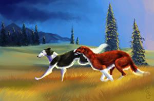 Фотографии Собаки Рисованные Двое Бег Трава Борзые Животные