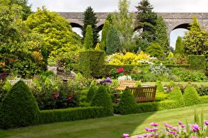 Обои Великобритания Сады Кустов Дерева Газон Скамейка Kilver Court Gardens Природа