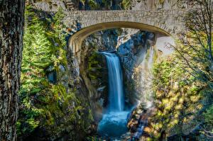 Фотография США Парки Водопады Мосты Ель Мха Маунт-Рейнир парк Christine Falls