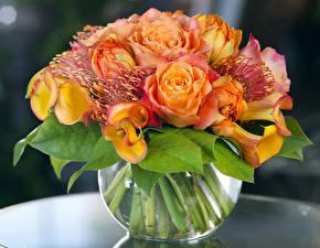 Фотография Букеты Розы Белокрыльник Тюльпаны Ваза Цветы