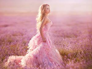 Картинки Лаванда Блондинка Платья Розовые Девушки