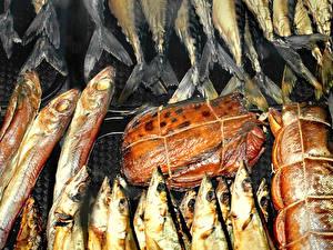 Фотографии Морепродукты Рыба Еда