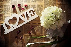 Картинка Букеты Любовь Газета Цветы