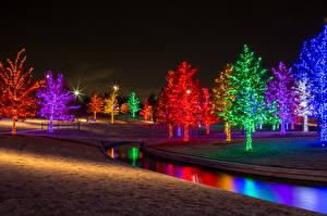 Картинка Парки Реки Пруд Деревья Электрическая гирлянда Ночь Природа