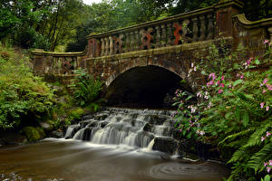 Картинка Англия Водопады Мосты Darwen Природа