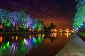 Фото Парки Мосты Пруд Деревья Электрическая гирлянда Ночь Природа