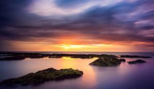Фотография Море Рассветы и закаты Горизонт Природа