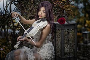 Картинки Азиатки Скрипки Платье девушка