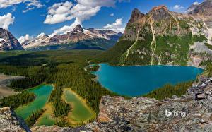 Фотографии Озеро Горы Парки Канада Пейзаж Леса Утес Bing Yoho National Park British Columbia Природа