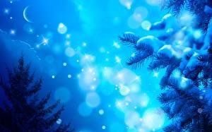 Картинки Сезон года Зима Новый год Ночные Снег Луной Ветки Снежинка Ель Природа