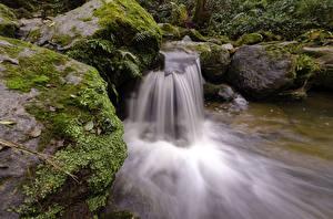 Фотография Водопады Камни Мох Природа