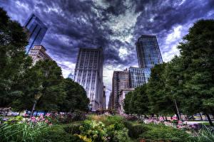 Фотография Штаты Небоскребы Чикаго город HDRI Облака Улица Деревья Кусты Города
